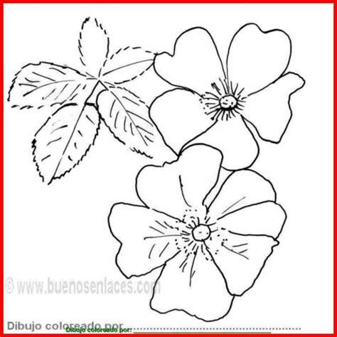 Nuevo Dibujos De Flores Para Imprimir Y Colorear Gratis