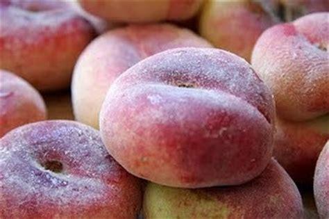 NUTRINEIRA: EL PARAGUAYO