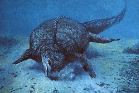 ocean dinsaurs | the Prehistoric Ocean: Illustrations of ...