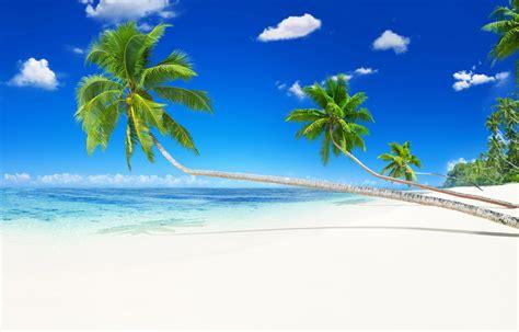 Ofertas Todo Incluido en Caribe. Ofertas de escapadas ...