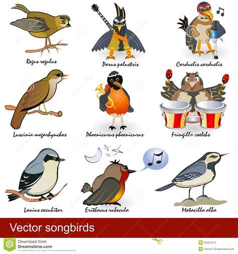 Oiseaux chanteurs illustration de vecteur. Illustration du ...