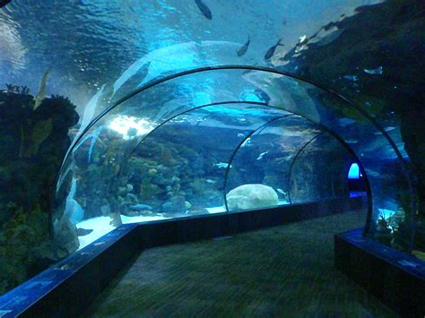 Omaha's Henry Doorly Zoo and Aquarium | Zookeeping 101