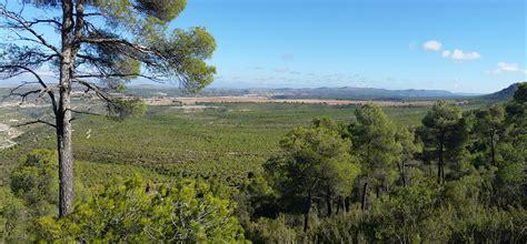 Opiniones de Bosque mediterráneo