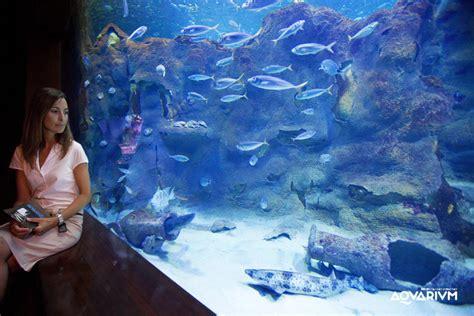 Opiniones del parque Aquarium Donostia San Sebastián ...