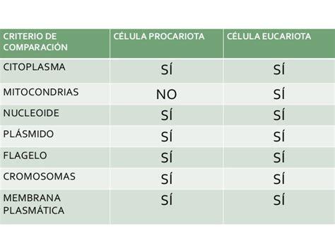 Organelos (celulas procariotas y ecuriotas)