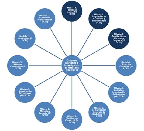 Organisation des Études    Grado  Marketing et Recherche ...