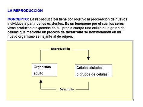 Organización celular de los seres vivos: procariota y ...