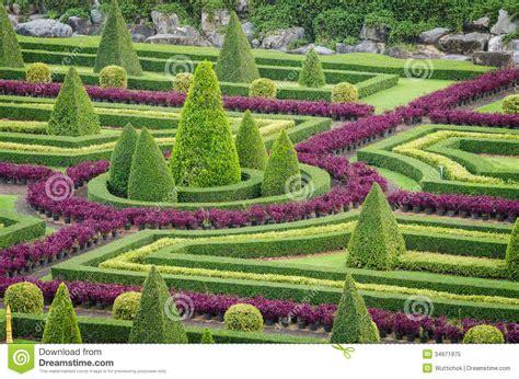 Ornamental Plants Tree Tropical Landscape In Nature Garden ...