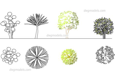 Ornamental trees DWG, free CAD Blocks download