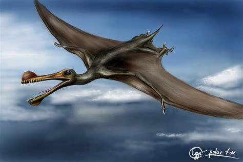 Ornithocheirus by SvPolarFox