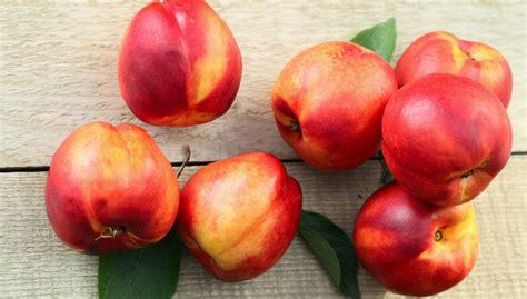Os Benefícios da Nectarina para a Saúde