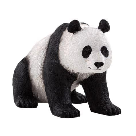 Oso Panda   Science4you