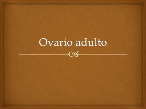 Ovario adulto