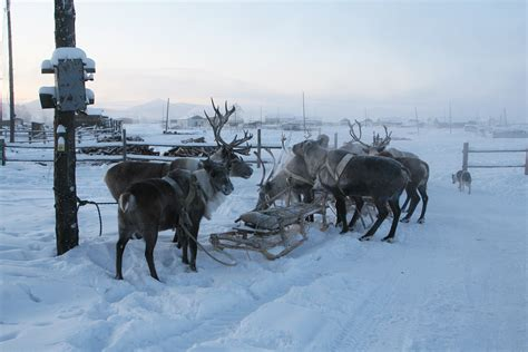 Oymyakon – General Information – Sakha Yakutia – Heart of ...