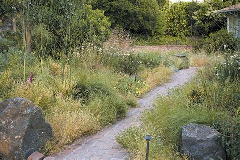 Pacific Horticulture Society | Meadows
