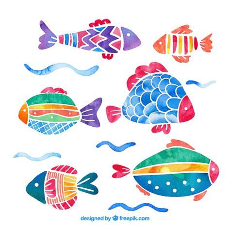 Pack de peces de colores de acuarela | Descargar Vectores ...