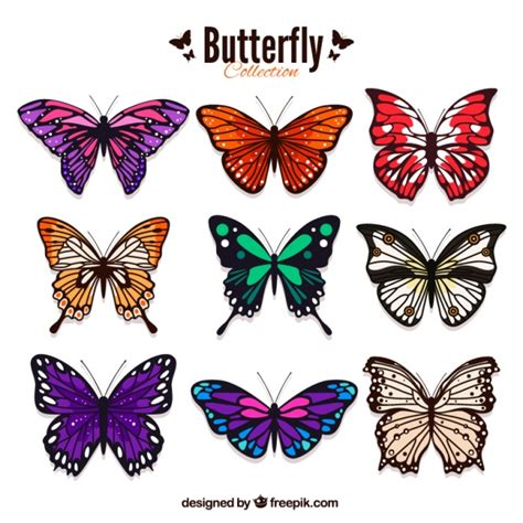 Pack of colored butterflies in realistic style Vector ...