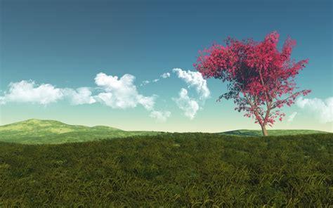 Paisagem bonita com árvore | Baixar fotos gratuitas