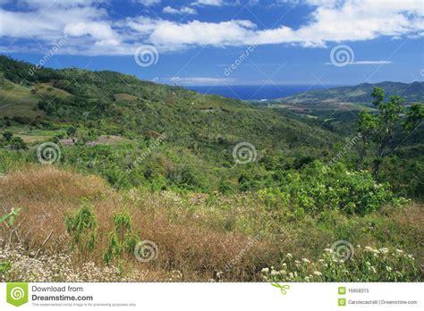 Paisaje Salvaje En El Sur De La Isla De Isla Mauricio Foto ...
