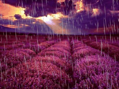 PAISAJES ANIMADOS: Paisaje animado de lluvia  8