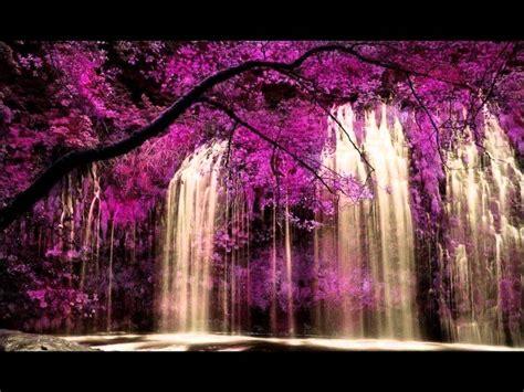 Paisajes de cascadas y jardines para admirar - YouTube