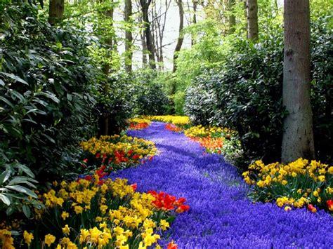 Paisajes de Ensueño: Paisajes de Flores | Primavera ...