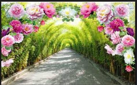 Paisajes De Flores Para Fondo De Pantalla   Fondos De ...