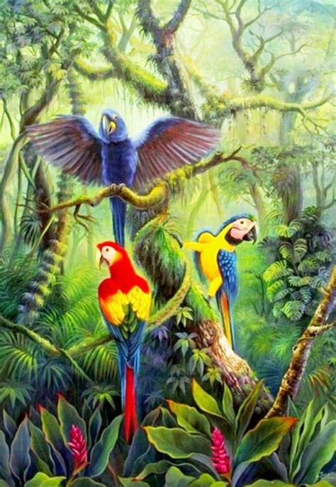 paisajes de la selva animales.jpg  706×1024    CIELO,MAR Y ...