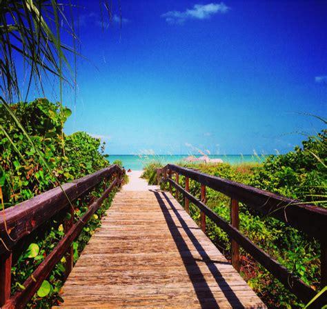Paisajes De Miami Florida   Bing images