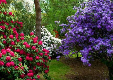 paisajes del mundo: Paisajes...bonitos de Primavera