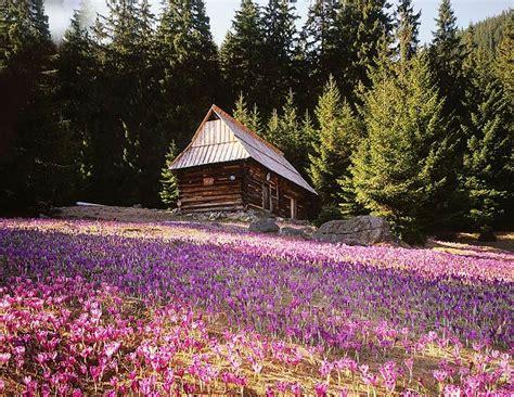 Paisajes hermosos, fotos de paisajes hermosos, imágenes ...