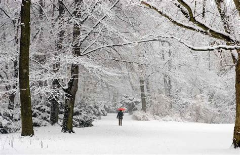 Paisajes nevados, simplemente inolvidables
