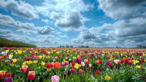 Paisajes primaverales hermosos   Imagui