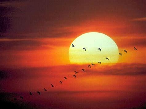 paisajes: puestas de sol