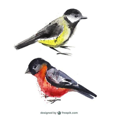 Pájaros pintados a mano | Descargar Vectores Premium
