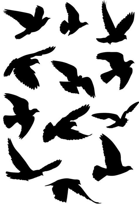 Pájaros volando - Comprar en Looma