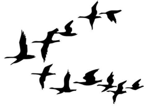 Pajaros volando dibujos - Imagui