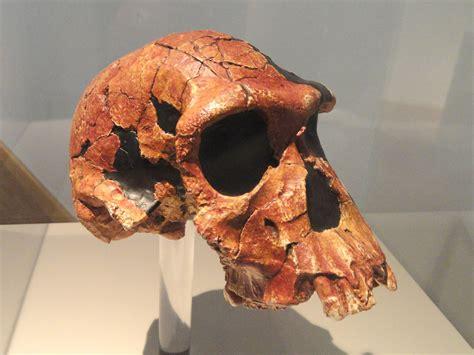 Paleolítico inferior - Wikipedia, la enciclopedia libre