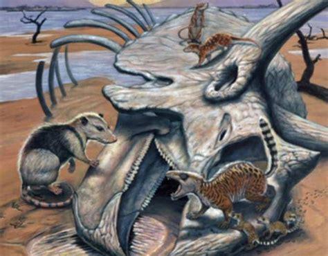 Paleontología Noticiosa: El dinosaurio más reciente ...
