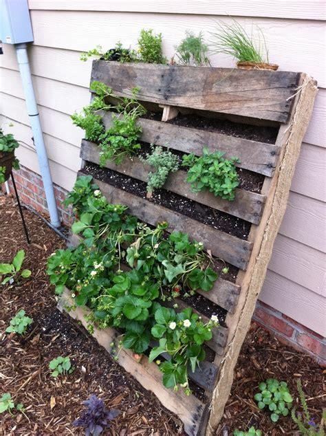 Pallet Gardening | innovativegardening