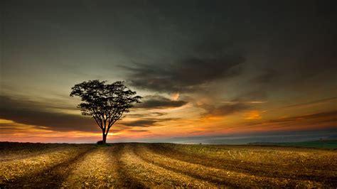Papéis de Parede Crepúsculo Paisagem bonita 1920x1200 HD ...