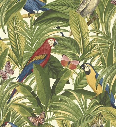 Papel pintado loros plantas y pájaros tropicales ...