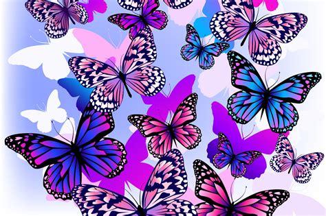 Papel Pintado Mariposas, Fondo Blanco, Paleta, Color ...