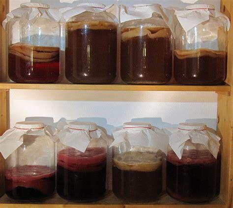 Para qué sirve y cómo se prepara el kéfir de kombucha ...