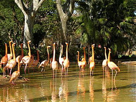 Parc Zoològic de Barcelona   Zoo at Barcelona