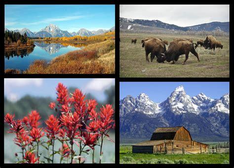 Parco nazionale del Grand Teton - Wikipedia