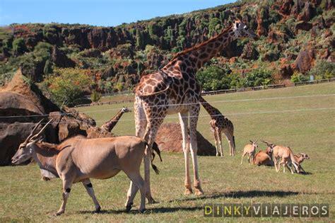Parque de la Naturaleza de Cabárceno: Un día entre de ...
