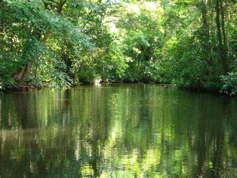 Parques nacionales de Costa Rica   Vacaciones en America