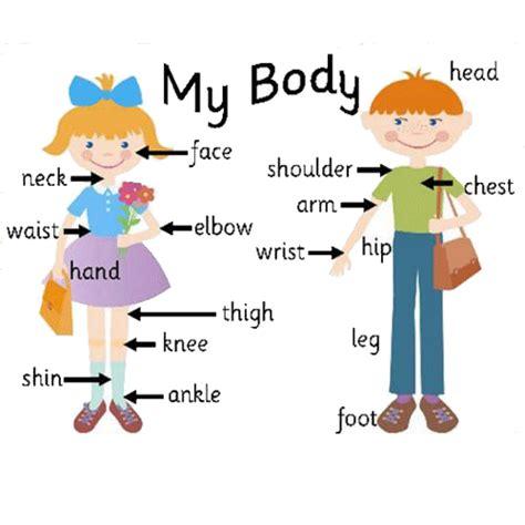 Partes del cuerpo en ingles para imprimir | Teaching ...