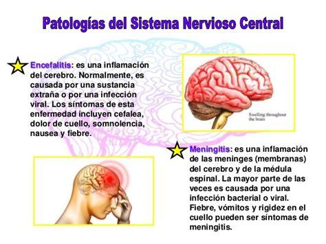 Patologías del Sistema Nervioso Central- Autónomo y Periférico